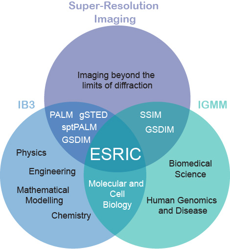 Venn diagram of ESRIC